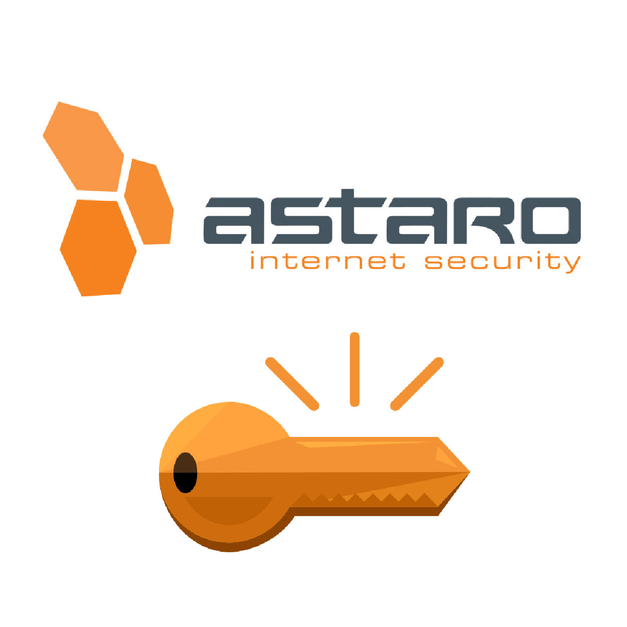 Astaro - Network Security Subscription for ASG 220 - Upgrading Key ,Firewall